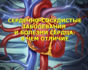 сердечно-сосудистые заболевания и болезни сердца