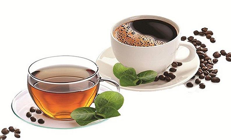 кофе и чай великолепные источники кофеина