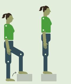 Упражнения лечебная физкульттура