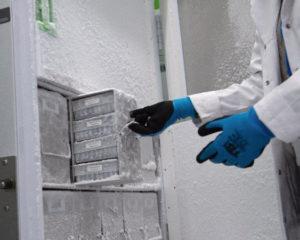 Хранилище вакцины от коронавируса